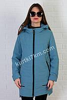 Куртка женская недорого  Ocean №8730