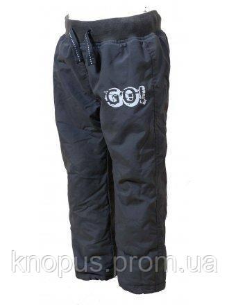 """Штаны демисезонные на флисе """"Go"""" (серые), PIDILIDI BUGGA, размеры 86, 98, 128"""