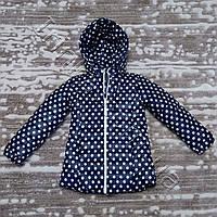 Теплая куртка для девочек Горошки (5-9 лет)