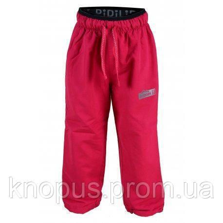 Штаны демисезонные для девочки на флисе  PIDILIDI розовые, размеры 104, 110