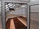 Теплица Вегетарий 3х6 Стандарт 10 мм, фото 6