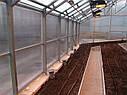 Теплица Вегетарий 3х6 Стандарт 10 мм, фото 8