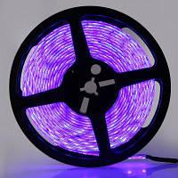 5m 300 светодиодов 5050 SMD водонепроницаемый светодиодный прожектор DC12V фиолетово-синий