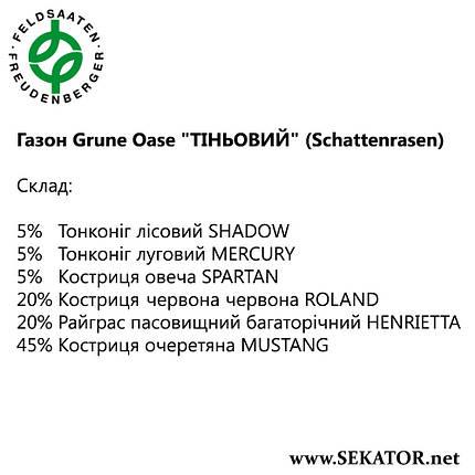 """Газон FF Grüne Oase """"Тіньовитривалий"""" (Schattenrasen), фото 2"""
