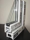 """""""REHAU Ecosol 60 (Экосол Рехау 60)"""" окна металлопластиковые., фото 2"""