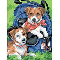 """Набор для рисования красками по номерам """"Рюкзак для друзей//Back Pack Buddies"""" DIMENSIONS"""