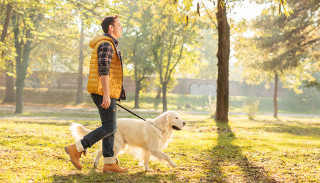 Прогулка с собакой