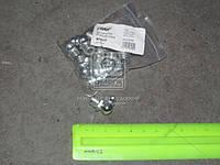 Пресс-масленка М10х1х90 угловая (10шт) (RIDER) RD-0012