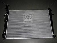 Радиатор охлаждения двигателя Hyundai Tucson/Kia Sportage 04- (пр-во Mobis) 253102E821