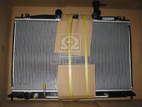 Радиатор охлаждения KIA RIO II (JB) (05-) (пр-во Nissens) 66687