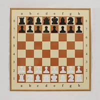 Демонстрационные шахматы 77 x 78 см (металл, пластик, магнитные)