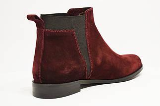 Ботинки замшевые бордо WindRose, фото 3