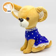Собака Чихуахуа мягкая игрушка
