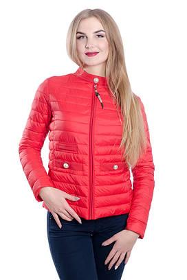 Женская куртка на холлофайбере FINEBABYCAT