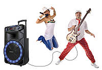 Акустика Manta power audio spk5023 Orion karaoke