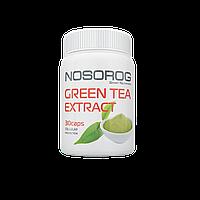 NOSOROG Green Tea Extract 60 caps