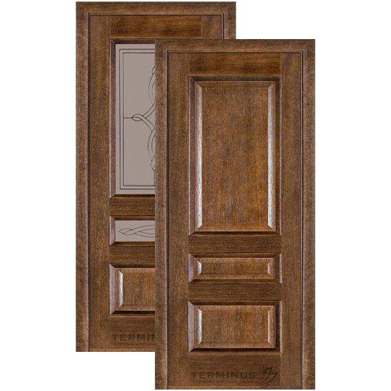 """Міжкімнатні двері Caro 53 """"TERMINUS"""""""