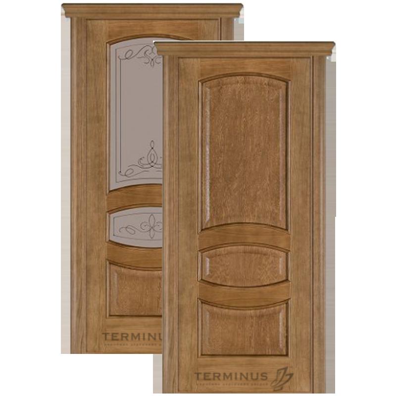 """Міжкімнатні двері Caro 50 """"TERMINUS"""""""