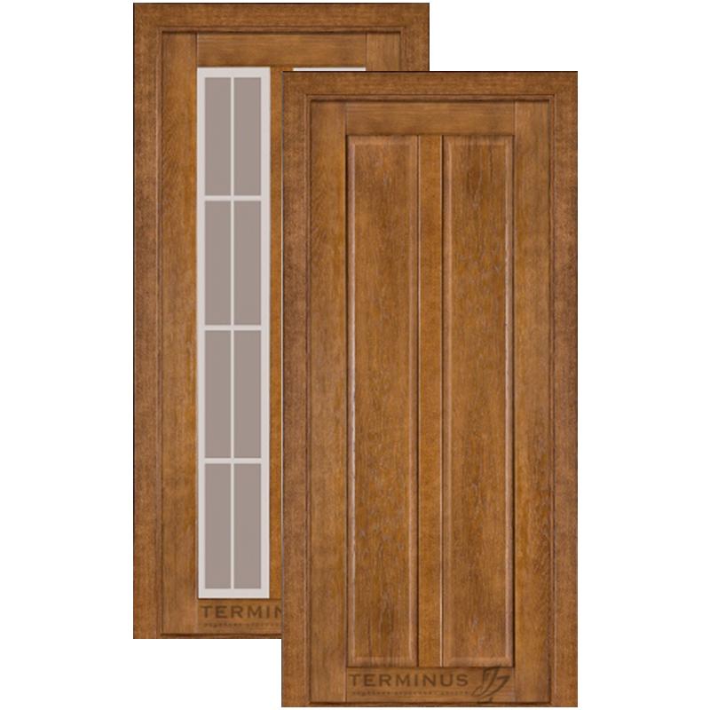 """Міжкімнатні двері Modern 117 """"TERMINUS"""""""