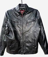 """Куртки мужские оптом """"BAOSHUN"""", кожзам (48-60)"""