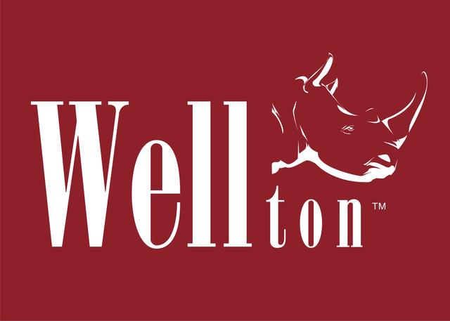 Малярный флизелиновый холст WELLTON