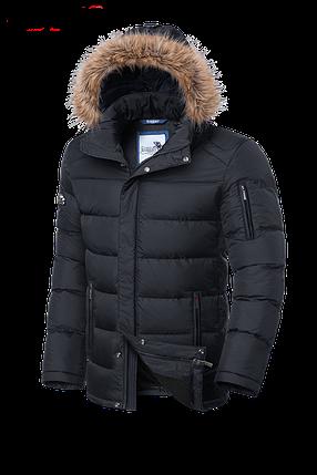 Мужская серая зимняя куртка с мехом Braggart (р. 46-56) арт. 3257G, фото 2