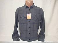 Мужская рубашка с длинным рукавом в клетку Piazza Italia , фото 1