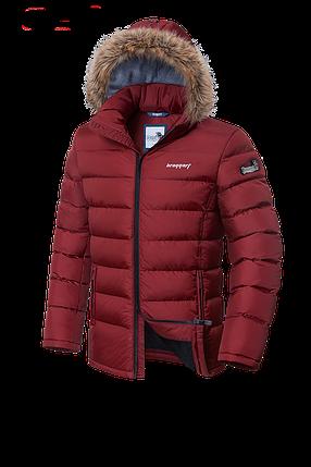 Мужская красная зимняя куртка Braggart Aggressive (р. 46-56) арт. 4495, фото 2