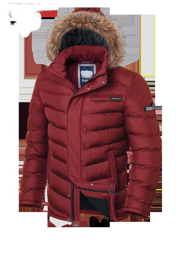 Мужская молодежная зимняя куртка Braggart (р. 46-56) арт. 4219