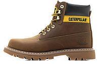 Мужские зимние ботинки Caterpillar Colorado Fur, мужские ботинки