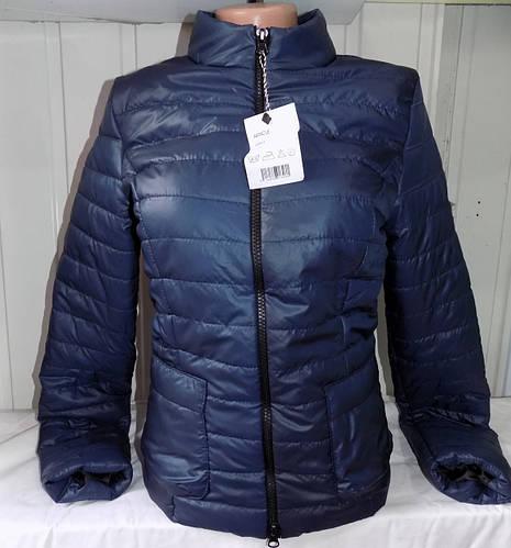 f90d3c4e Куртка женская стеганая стойка весна-осень 116 (цвет темно-синий) оптом: купить  оптом от производителя.