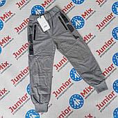 Детские трикотажные штаны для мальчиков оптом  F&D