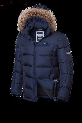 Мужская зимняя куртка-парка с мехом Braggart (р. 46-56) арт. 4233 темно-синий, фото 2