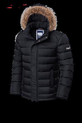 Мужская черная зимняя куртка с мехом Braggart (р. 46-56) арт. 3612, фото 2