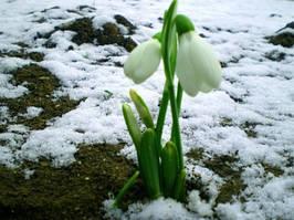 Настала весна, наступило время внешнего и внутреннего преображения
