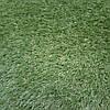 Искусственная ландшафтная трава Condor Grass Victoria