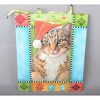 Подарочный пакет TF414, 32*26 см, с ручками, Пакеты для подарка, Подарочные пакеты с ручками