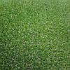 Искусственная ландшафтная трава Condor Grass Madrid