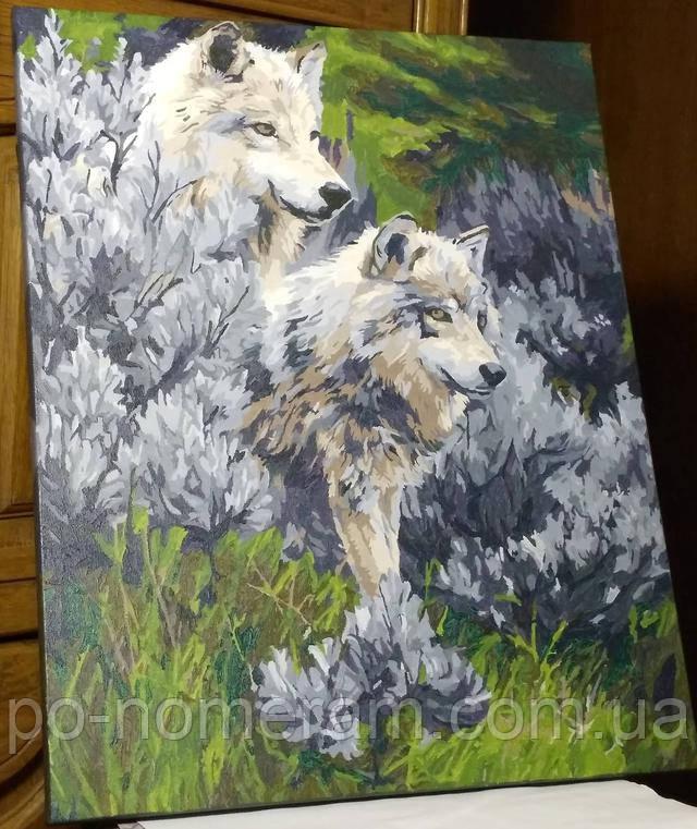 Картина по номерам волки отзывы