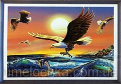 """Набор алмазной вышивки полной выкладки """"Могущественная птица"""" Размер: 68*40 см Код 198910"""