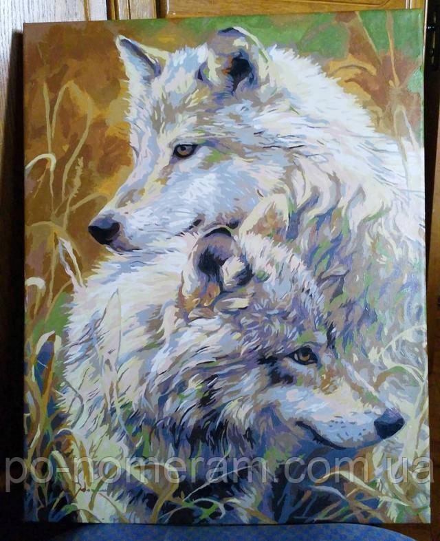 Раскраска по номерам с волками отзывы