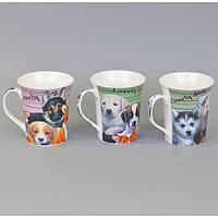 """Чашка керамическая для напитков """"Собака"""" CB752, размер 10х9 см, 4 вида, в коробке, чашка для чая, посуда для чая"""