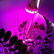 Лампа светодиодная фитоосвещение SL-18F 18W Е27 220V (fito spectrum led) Код.59207, фото 3