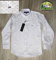 Рубашка белая брендовая для мальчика Tommy Hilfiger