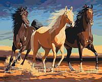Раскраска по цифрам Прекрасные лошади 40 х 50 см