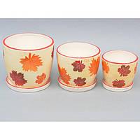 """Комплект вазонов для цветов """"Seasons"""" 9A52, в наборе 3 шт, 3 вида, керамика, вазон для комнатных растений, горшок для растений, фото 1"""
