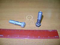 Болт трубки топливной (пр-во ЯМЗ) 310239-П29