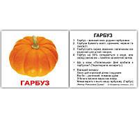 """Картки Домана """"Овочі"""", 40 міні-карток з фактами Українською мовою Вундеркінд з пелюшок"""