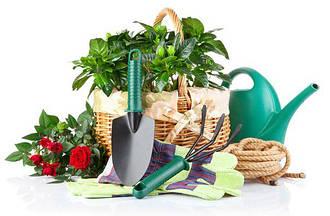 Сад и огород, полив
