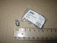 Пресс-масленка М8x1 прямая (10шт) (RIDER) RD-0016